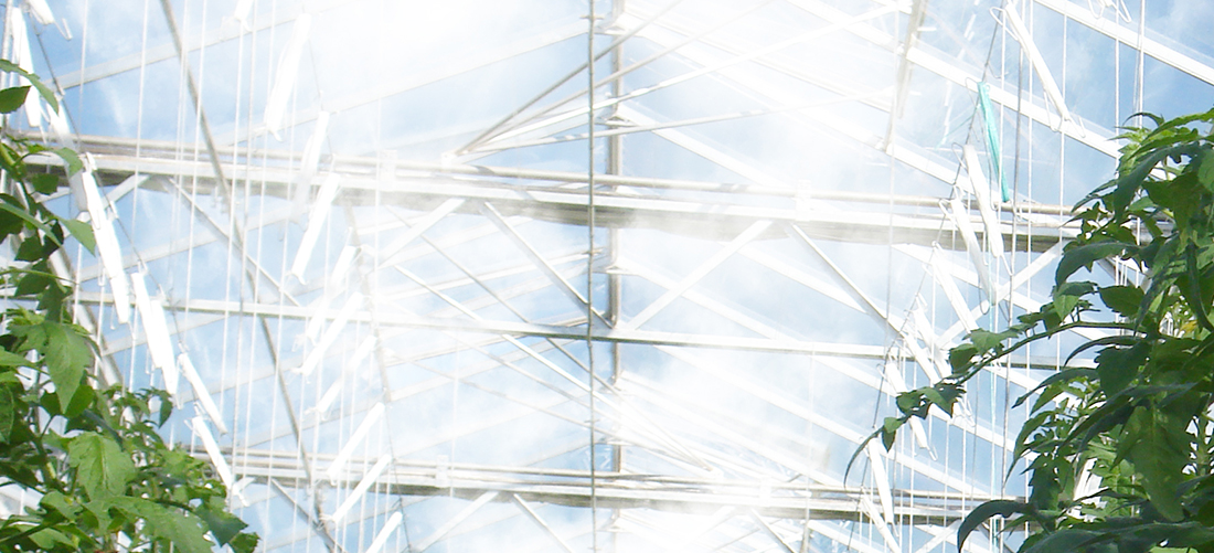 Greenhouse Humidification