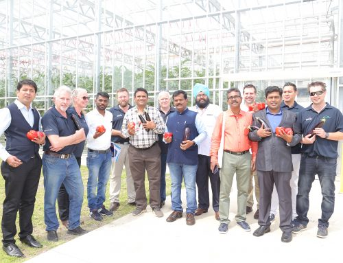 Showcasing Australian Greenhouse Production to Academics from India
